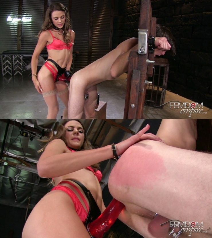 Femdom Empire Ally Tate: Strap-on Size Queen – STRAP-ON