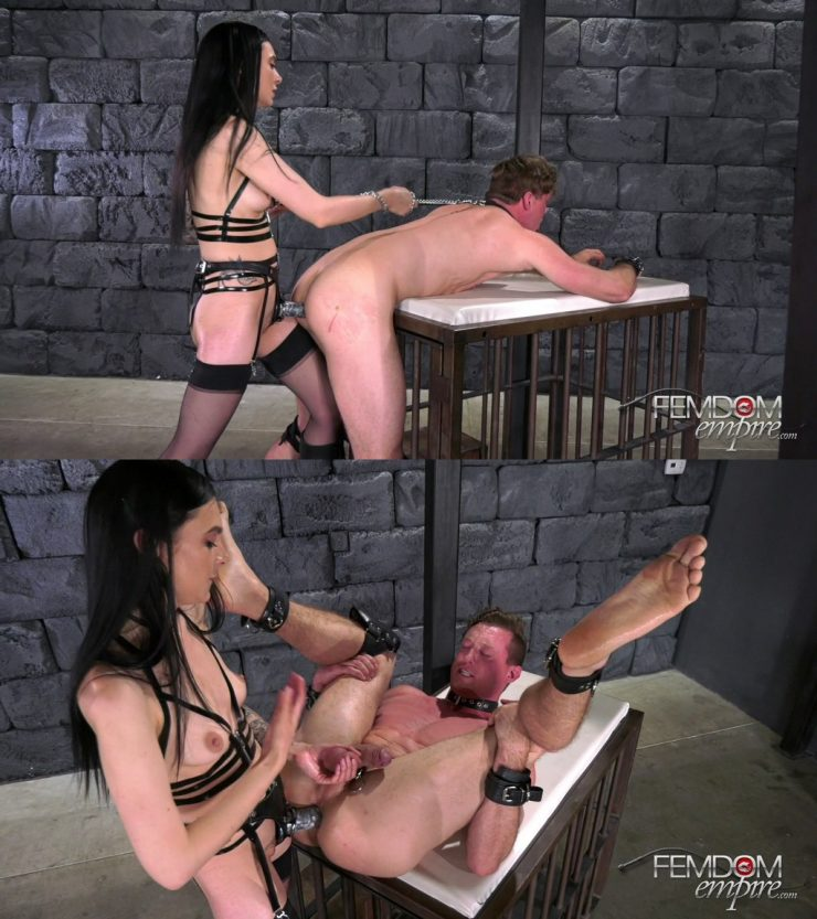 FemdomEmpire Marley Brinx: Born to be Fucked – STRAP-ON